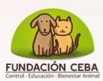 Fundación CEBA
